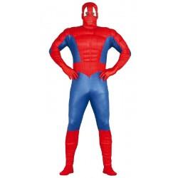 Disfraz de Superheroe Araña...