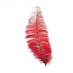 Pluma Roja de Avestruz 30 cm.