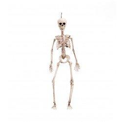 Esqueleto 49 cm.