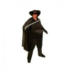 Disfraz de Heroe Zorro...